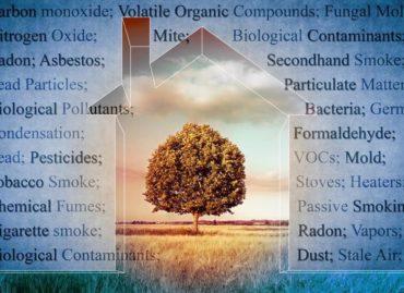 אילו רעלים מסביבנו משפיעים לרעה על בריאותינו?